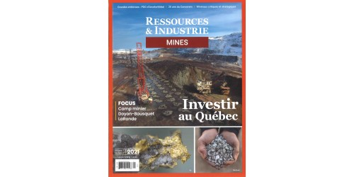 RESSOURCES MINES ET INDUSTRIES