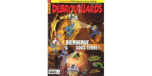 DÉBROUILLARDS (to be translated)