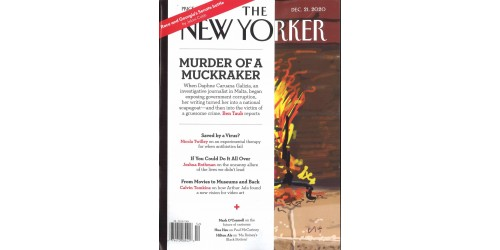 NEW YORKER (to be translated)